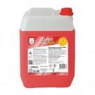 Dezincrustant Cleanex Fe-Cu Plus 5 Kg