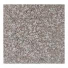 Granit lucios 30,5x30,5x1 cm G664