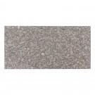 Granit lucios 30,5x61x1 cm G664