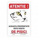 Indicator 314 - Atentie, pisici