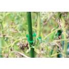 Accesorii pentru legat plante PCR-2, polietilena