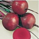 Seminte sfecla rosie Detroit 2