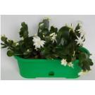 Jardiniera plastic Verbena cu tava, interior/exterior, verde, 30 x 10,5 cm