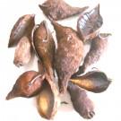 Decoratiuni Tutun Salbatic - Maro