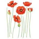 Sticker Friedola 2 buc Red Poppy 53004