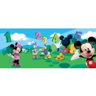 Fototapet copii vlies Disney Mickey Mouse 4-029-VE-XL 208 x 146 cm
