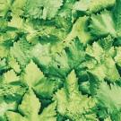 Autocolant Leaves 10195 Gfix 0.45 x 15 m