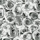 Autocolant Roses 12856 Gfix 0.45 x 15 m
