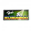 Magnet metalic Hai Romania 12x5 cm
