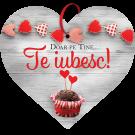 Tablou cu mesaj Valentine s Day, ES9906, inima, 22 x 20 cm
