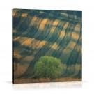 Tablou 03318, pe panza, stil modern, Peisaj de vara, 60 x 60 cm