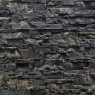 Piatra exterior Basel 03