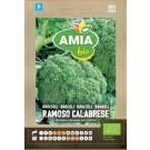 Seminte legume bio Amia, brocoli Ramoso Calabrese