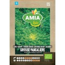 Seminte legume bio Amia, cicoare creata Grosse Pancaliere