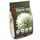 Seminte trifoi alb 891, 0.5 kg