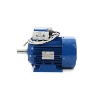 Motor electric, monofazat, MMF CS 100L-4, 2.2 x 1500, 3 CP