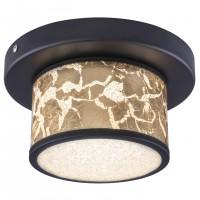 Plafoniera LED Petreg 49367-12D, 12W, 730 lm, lumina neutra, negru + auriu