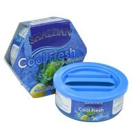 Odorizant auto gel Shaldan Cool Fresh, conserva, marine squash