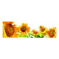 Panou decorativ din sticla, pentru bucatarie / baie Glasfabrik DKEMG1, aspect floral, 1400 x 600 x 4 mm