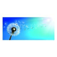 Panou decorativ din sticla, pentru bucatarie / baie Glasfabrik DKEMG48, aspect floral, 1400 x 600 x 4 mm