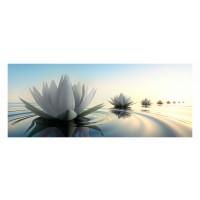 Panou decorativ din sticla, pentru bucatarie / baie, Glasfabrik DKEMG80, aspect floral, 2400 x 600 x 4 mm