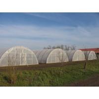 Folie sera / solariu, polietilena S1N, transparenta, stabilizata UV, 130 microni, 8,5 x 60 m