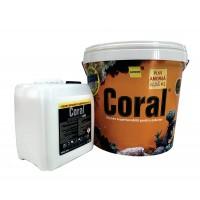 Vopsea superlavabila exterior, Coral, alba, 15 L + amorsa speciala Coral, alba, 4 L