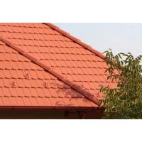 Tigla de beton 1/1 Bramac Reviva P5, rosu caramiziu