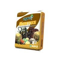 Pamant fertil, pentru cactusi si plante suculente, Agro CS, 5 l