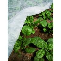Folie protectie plante Ortoclima, polietilena, 1.6 x 500 m