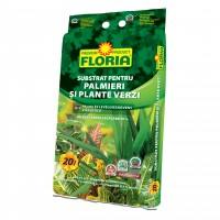 Substrat pentru plante verzi si palmieri Floria 20 l
