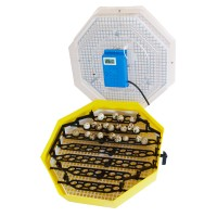 Incubator electric pentru oua, Cleo 5DTH, cu dispozitiv intoarcere, termometru, termohigrometru