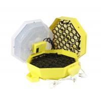 Incubator electric pentru oua, Cleo 5x2 DTH, cu dispozitiv intoarcere, termohigrometru