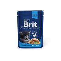 Hrana umeda pentru pisici, Brit, junior, carne de pui, 100g