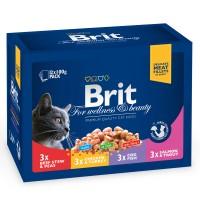 Hrana umeda pentru pisici, Brit Family Variety, 12 x 100 g