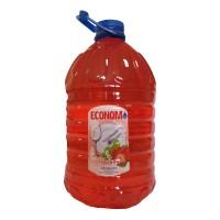 Detergent lichid pentru vase Economist, aroma capsuna, 5 l