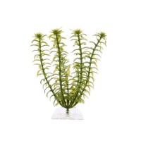 Planta decorativa acvariu pesti, Anacharis-S, pvc