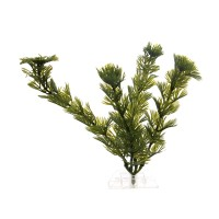 Planta decorativa acvariu pesti, Cabomba-S, pvc