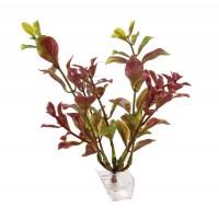 Planta decorativa acvariu pesti, Ludwigia-S, pvc