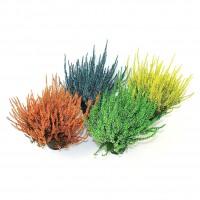 Planta pentru exterior Calluna vulgaris, iarba decorativa, mix culori, H 25 cm, D 11 cm