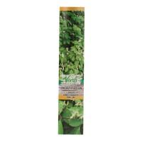 Arbust ornamental Lonicera xylosteum (caprifoi), H 15 - 25 cm