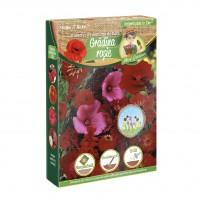 Amestec seminte flori Micul Gradinar, gradina rosie, 250 g