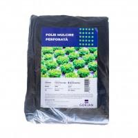 Folie pentru mulcire, perforata, 15 mic, 25 x 25 cm, 10 gauri x D 50 mm, 2.5 x 50 m