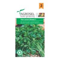 Seminte legume patrunjel frunze Plain leaved 2 A