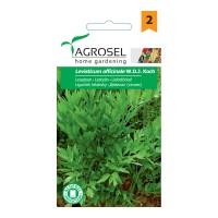Seminte legume leustean AS-PG2