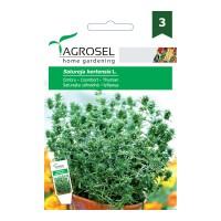 Seminte legume cimbru AS-PG3