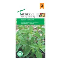 Seminte legume busuioc AS-PG2
