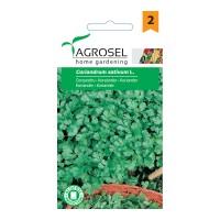 Seminte legume coriandru AS-PG2