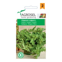Seminte legume oregano AS-PG2