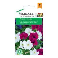 Seminte flori petunia AS-PG2